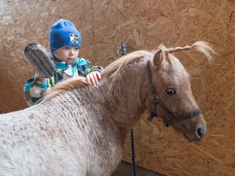 Ylämäen Virkityslomat - lapsi ja hevonen