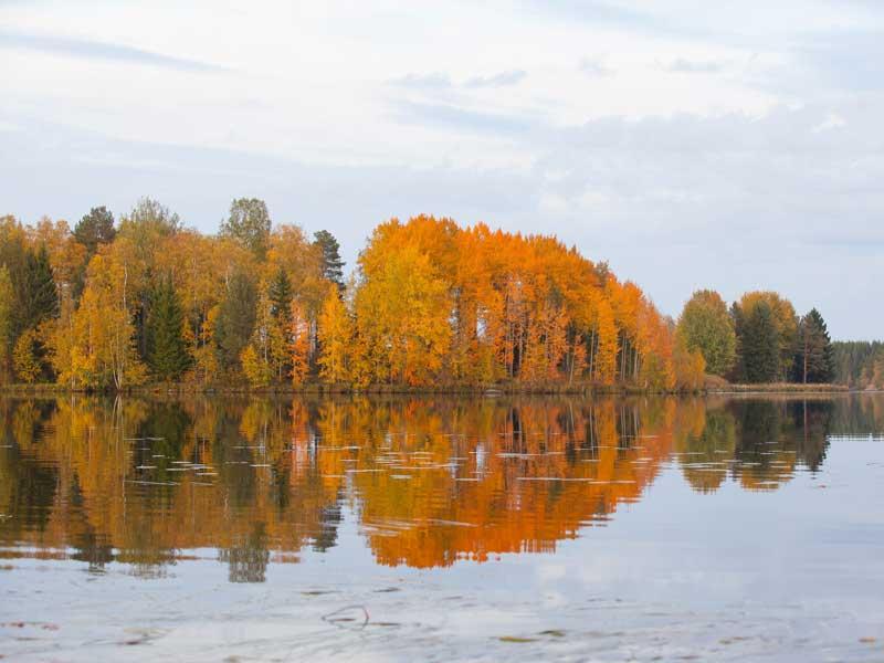 Ylämäen Virkityslomat - Syksyinen järvimaisema
