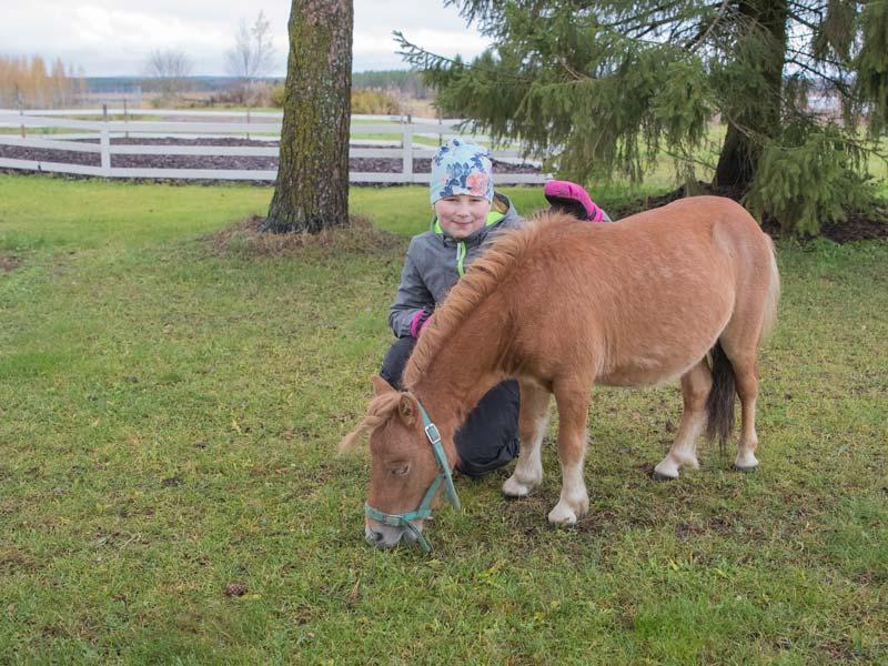 Ylämäen Virkityslomat -hevonen ja lapsi