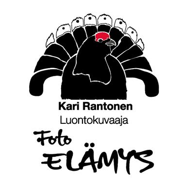 FotoElämys logo